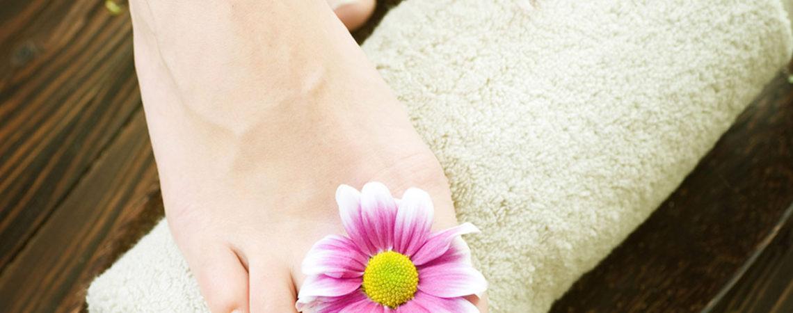 flower-1200x900-3